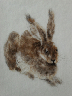 Hare K Skeates web