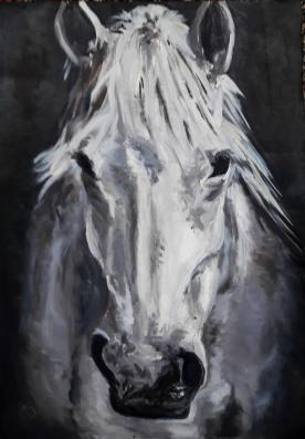Jane Jameson 2019 Horse